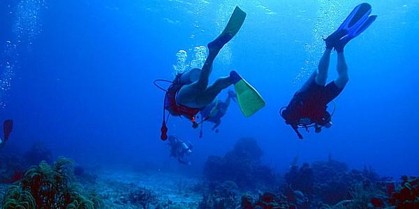 dubrovnik diving